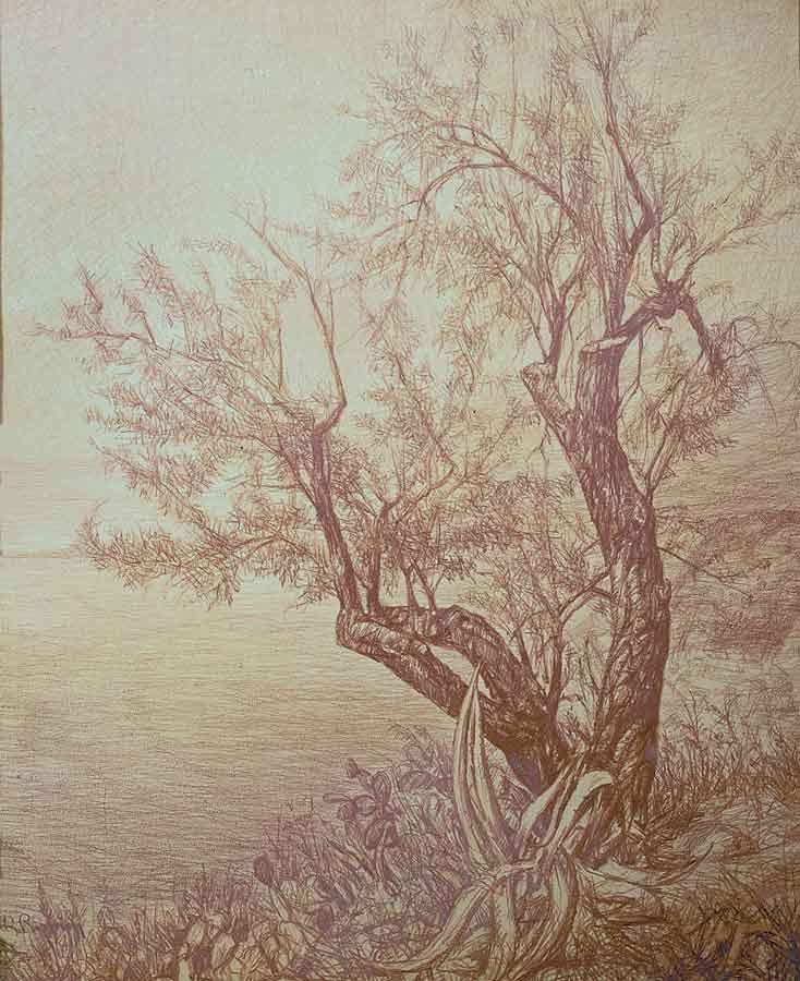 323 Paesaggio con albero