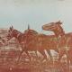 347 La trebbiatura con i muli