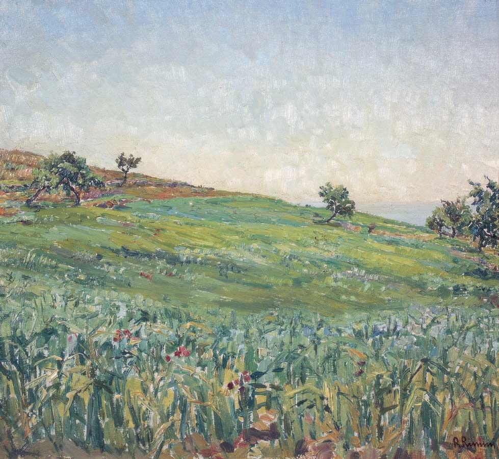 79 Paesaggio (prato-fiorito)