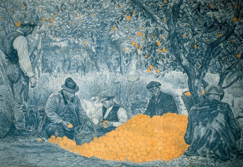 81 Scarto dei limoni